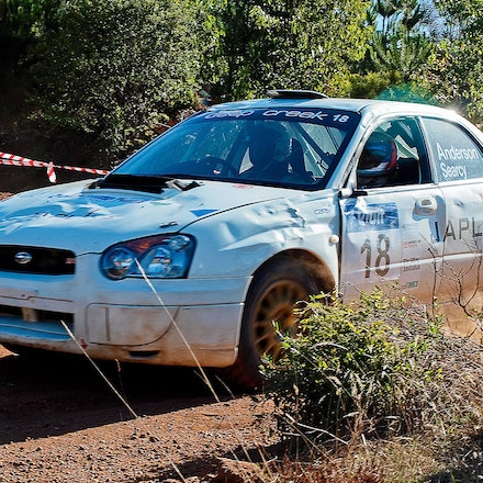 Forest_Rally_20100418_0987