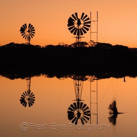 07BR04_015_Kerri Cliff - Windmills on Barna Dam at sunset