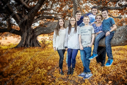Internet 073 Monica's grandchildren - 14 July 2014 - Centennial Park - Family photography - pregnancy photos sydney