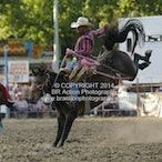 Tumbarumba APRA Rodeo 2015 - Main - Sect 2