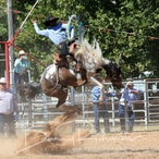 Kyabram APRA Rodeo 2018 - Slack Session