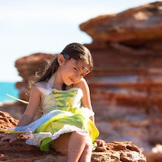 Kim's Broome Fairy