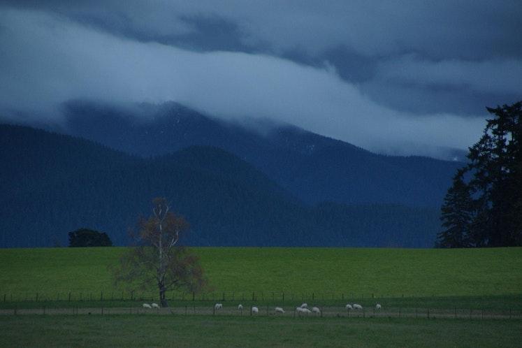 May 09 NZ 3 322 - SONY DSC