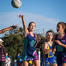 2017 Noosa State Age Teams - Images from the 2017 Nissan Qld State Age Netball Championships hosted by Pine Rivers Netball Association
