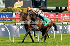 4 OCT RANDWICK RACES