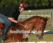 18 AUG RANDWICK TRACK WORK