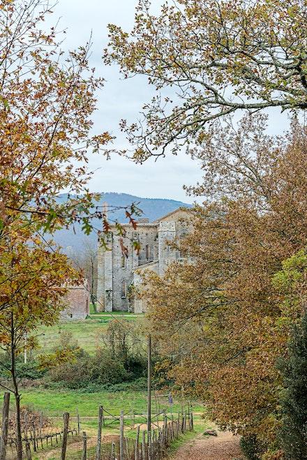 106 Abbey of St Galgano 191115-4099-Edit