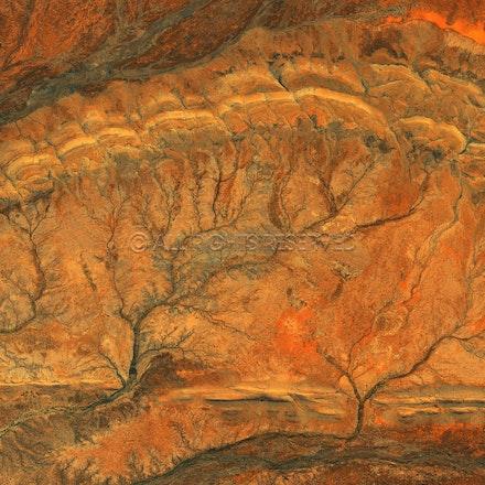 Desert Cortex